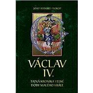 Václav VI. - Elektronická kniha