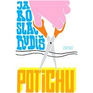 Potichu - Jaroslav Rudiš