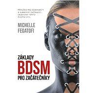 Základy BDSM pro začátečníky - Elektronická kniha