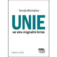 Unie ve víru migrační krize - Elektronická kniha