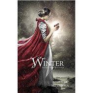 Winter - Měsíční kroniky - Elektronická kniha