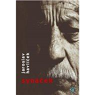 Synáček - Elektronická kniha