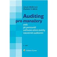 Auditing pro manažery aneb jak porozumět ověřování účetní závěrky statutárním auditorem - 3. vydání - E-kniha