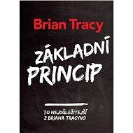 Základní princip - Elektronická kniha