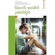 Slovník sociální patologie - Blahoslav Kraus