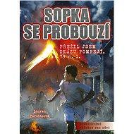 Sopka se probouzí - Elektronická kniha