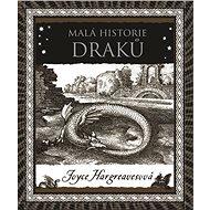 Malá historie draků - Elektronická kniha