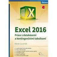 Excel 2016 - E-kniha
