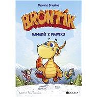 Brontík 1 - Kamarát z praveku - Elektronická kniha
