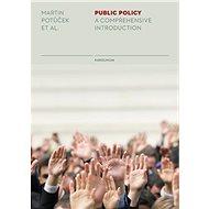 Public Policy - Elektronická kniha