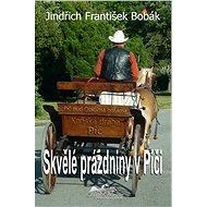 Skvělé prázdniny v Píči - Elektronická kniha