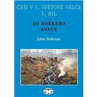 Češi v 1. světové válce, 3. díl. - Elektronická kniha