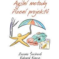 Agilní metody řízení projektů - Elektronická kniha