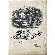 Kruhy na vode (SK) - Mária Slivenská PhDr., 149 stran