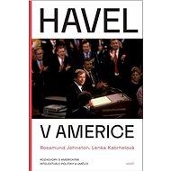 Havel v Americe: Rozhovory s americkými intelektuály, politiky a umělci - Elektronická kniha