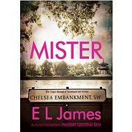 Mister - Elektronická kniha