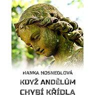 Když andělům chybí křídla - Elektronická kniha