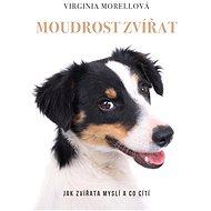 Moudrost zvířat - Virginia Morell, 376 stran