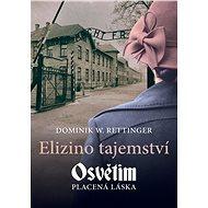 Elizino tajemství - Elektronická kniha