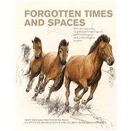 Forgotten Times and Spaces - Elektronická kniha