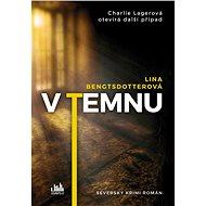 V temnu - Lina Bengtsdotterová, 384 stran