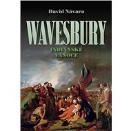 Wavesbury: Indiánské Vánoce - David Návara, 422 stran