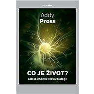 Co je život? - Addy Pross, 221 stran