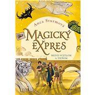Magický expres 2 - Medzi svetlom a tieňom - Elektronická kniha
