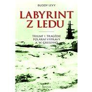 Labyrint z ledu - Elektronická kniha