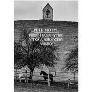 Příběh pana rytíře Vítka a jeho dcery Anežky - Petr Motýl, 334 stran