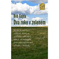 Dva roky v zeleném - Elektronická kniha