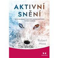 Aktivní snění - Robert Moss, 313 stran
