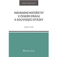 Náhradní mateřství v českém právu a související otázky - Elektronická kniha