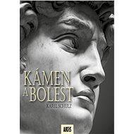 Kámen a bolest - Karel Schulz, 590 stran