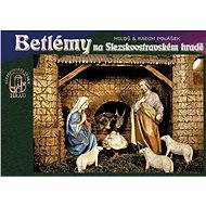 Betlémy na Slezskoostravském hradě - Elektronická kniha