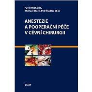 Anestezie a pooperační péče v cévní chirurgii - E-kniha