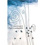 Ptáci v orchestřišti - Elektronická kniha