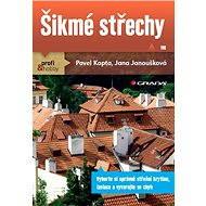 Šikmé střechy - Elektronická kniha