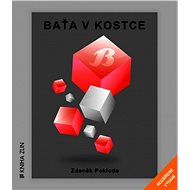 Baťa v kostce - Elektronická kniha