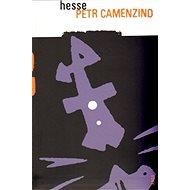 Petr Camenzind - E-kniha