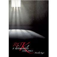 Rok v kriminále - E-kniha