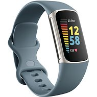 Fitbit Charge 5 Steel Blue/Platinum Stainless-Steel