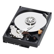 WD Caviar Blue 750 GB 32 MB cache - Pevný disk