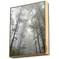 Energy Sistem Frame Speaker Forest