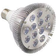 Growlight LED 12W FS strieborná - Žiarovka
