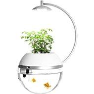 Herb &Fish Connect - Dávkovač krmiva