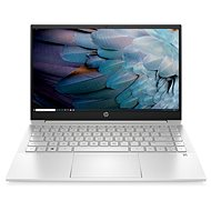 HP Pavilion 14-dv0004nc Natural Silver - Notebook