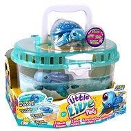 Little Live Pets - Korytnačia nádrž - Herná súprava