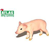 Atlas Sele  - Figúrka