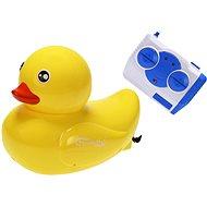 Remote Control Duck - RC Model